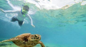 10 grandes estupideces que los turistas hacen en vacaciones