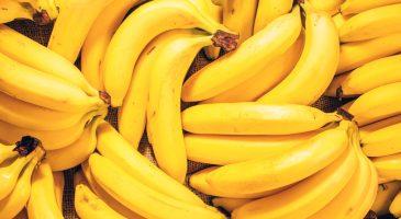 15 cosas que aún no sabías sobre los plátanos